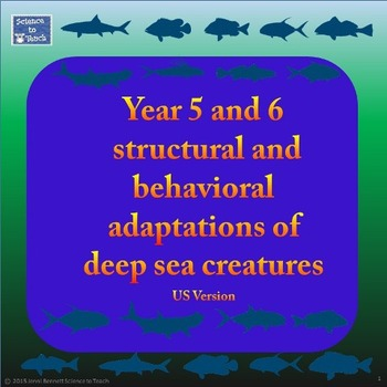 Adaptations of Deep Sea Creatures