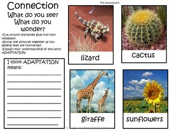 Adaptations of Living Things Interactive IB PYP Science Unit of Inquiry