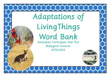 Adaptations of Living Things Word Bank