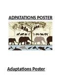 Adaptations of Organisms