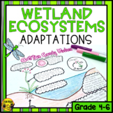 Wetlands Physical and Behavioral Adaptations Activity and Assessment