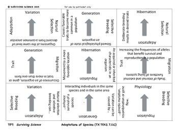 Adaptations of Species: Vocabulary Cards Scramble Game ( TEK 7.11C)