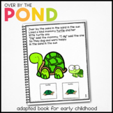 Dragonfly Dragonfly What Do You See?: Adapted Book for Students with Autism