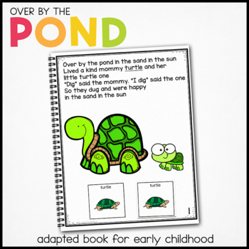 Dragonfly Dragonfly What Do You See?: Adapted Book for stu