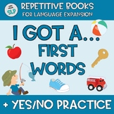 Adapted Book FIRST WORD Vocabulary Speech Language Therapy Answering Yes No