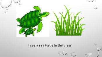 Adapted Book: Ocean Creatures