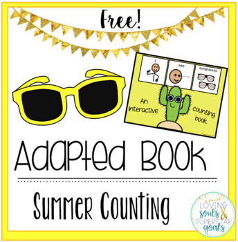 Adapted Book: Sunglasses Summer Counting