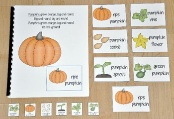 The Pumpkin Life Cycle Adapted Book