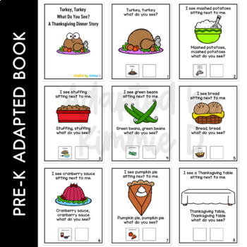 Turkey Turkey What Do You See?: Adapted Book for Special Education