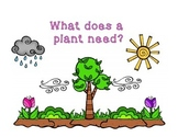 Adapted Book for Early Childhood and Autism Students: Plant's Needs