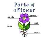 Adapted Book for Early Childhood and Autism Students:Parts