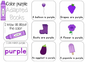 Adapted Book for the Color Purple (3 Differentiated Levels)