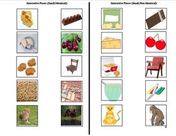 Adapted CH Consonant Digraph Book : AUTISM