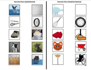 Adapted Consonant Digraph Books (BUNDLE) : AUTISM