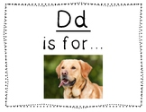 Adapted Letter D book