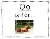 Adapted Letter O Book