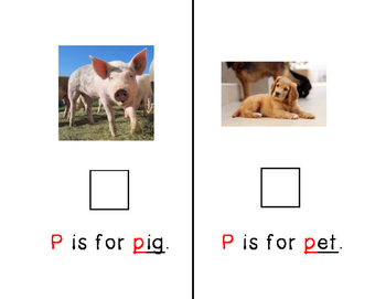 Adapted Letter P Book