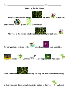 Adapted Reading-Animals and the Layers of the Rainforest