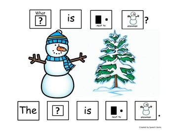 Winter Snowman Adapted Book Wh Questions (Who and What)
