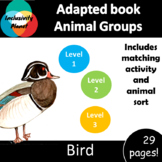 Animal Group Birds ADAPTED BOOK (level 1, level 2 and level 3) & activities