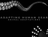 Adapting Human Gear: Animal Adaptations
