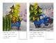 Adaptive Books- Little Blue Trucks Christmas