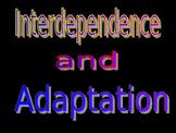 Adaptive Traits and Survival
