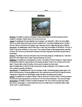 Addax - Endangered Animal - Review Article Questions Vocabulary Word Search