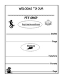 Adding Adjectives Activity with Free Lesson Plan and Rubric