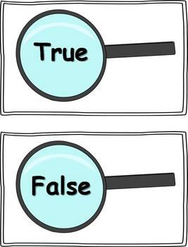 Addition Equations: True or False