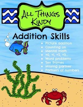 Addition Skills
