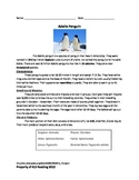 Adelie Penguin - Review Article Questions Vocabulary Activities Word Search