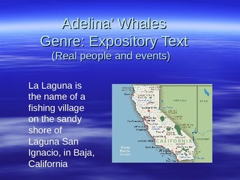 Adelina's Whale Vocabulary Power Point Reading Street 2011