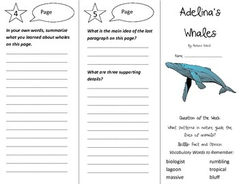 Adelina's Whales Trifold - Reading Street 4th Grade Unit 3 Week 2