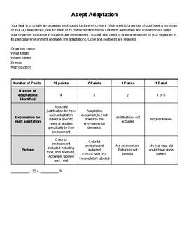 Adept Adaptation Assignment Instructions