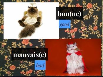 Adjectifs Vocabulary Prezi (Comment est ta famille?) Bien Dit! 1 Ch. 3