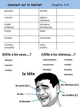 Adjectifs Vocabulary Organizer (Comment est ta famille?) Bien Dit! 1 Ch. 3