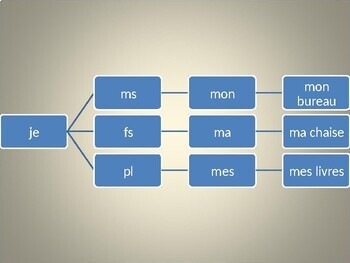 Adjectifs et pronoms possessifs (Possessive adjectives and pronouns) PowerPoint