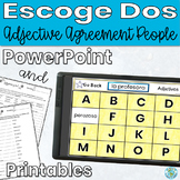 Adjective Agreement Describing People Game/Activity/Assess