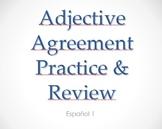 Adjective Agreement PowerPoint Quiz - Spanish
