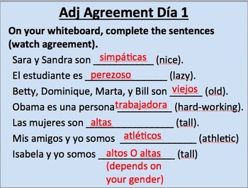 Adjective Agreement in Spanish__Initial Presentation