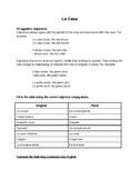 Adjective Agreements in Italian- La Casa