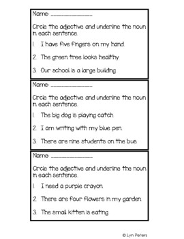 Adjective Exit Tickets