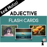 Adjective Flash Cards - Real Photos!