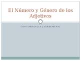 Adjective Noun Agreement Powerpoint in Spanish