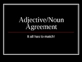 Adjective Noun Agreement in Spanish