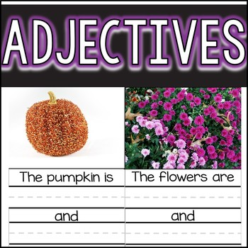 Adjective Photo Cards