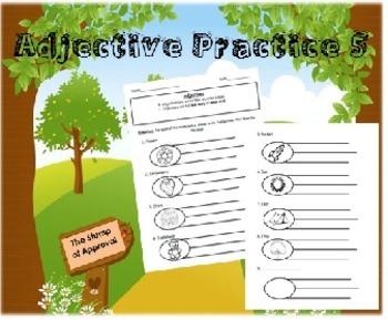 Adjective Practice 5