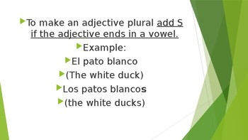 Adjectives/ Adjetivos