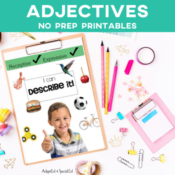 Adjectives: Describe It Special Education Speech Therapy